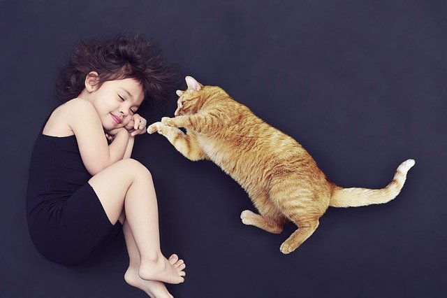 Helping your cat adjust to a new baby
